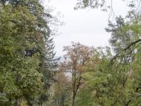 2015-10-25-prochazka-uklid-krmitka-brno-kohoutovice_0390