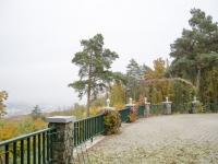 2015-10-25-prochazka-uklid-krmitka-brno-kohoutovice_0400