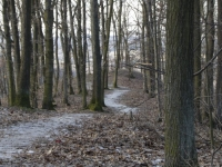 2016-01-17-Brno-Kohoutovice-lom-0018