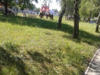 2016-06-24-aquapark-plaveme-na-prazdniny-Naděžda-Suttnerová-03