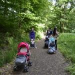 Kohoutovičáci na společné procházce I