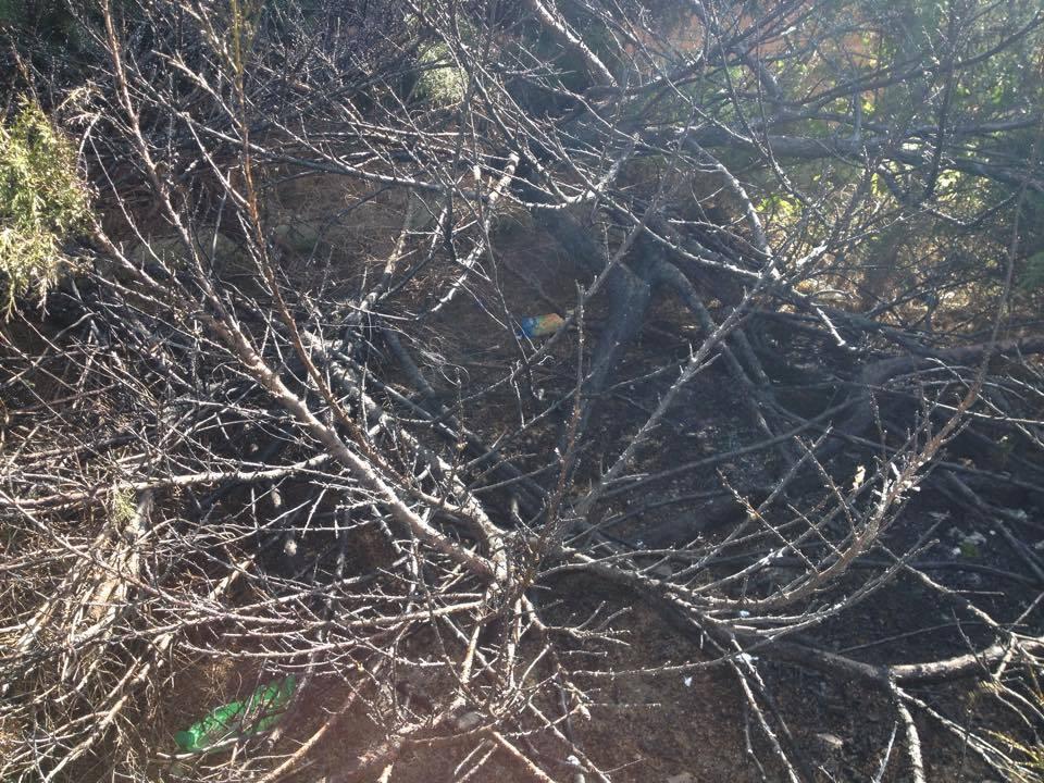 oheň-požár-brno-kohoutovice-stamicova-5