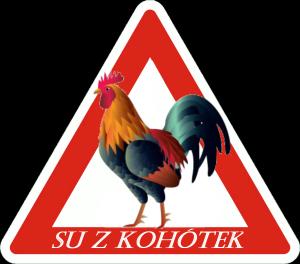 SU-Z-KOHÓTEK-brno-kohoutovice-spz-baby-on-board-kohoutovičák