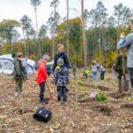 U Staré dálnice se sázely stromy – obnova lesa po kůrovcové kalamitě přilákala 4 tisíce lidí